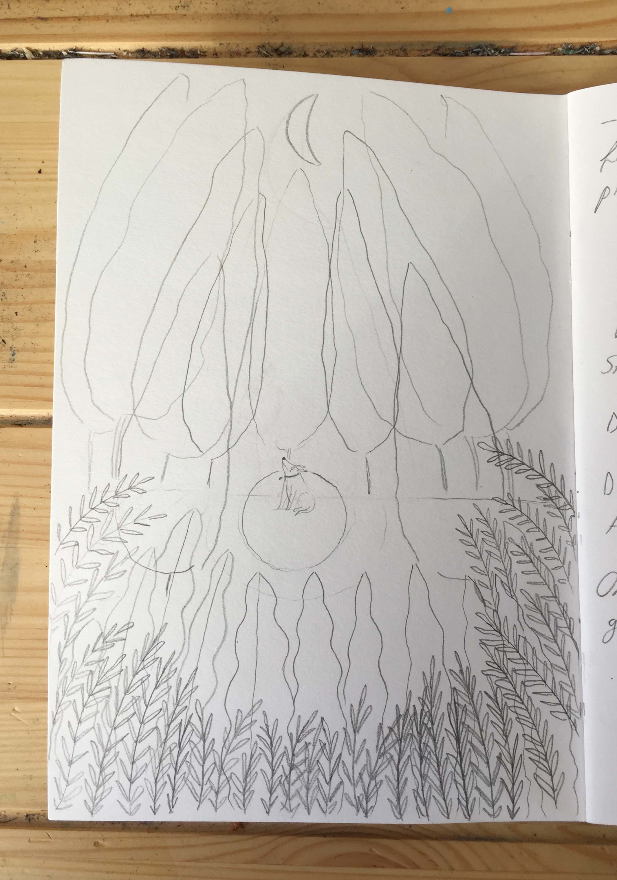 Schnookie-Sketch-2.JPG#asset:281